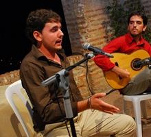Imagen de Flamenco